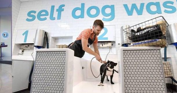 pet-smart-reinvented-store.jpg